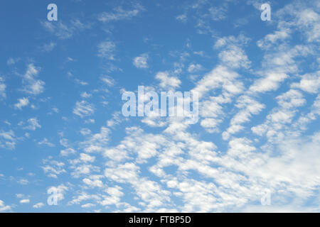 Sign of good weather high Cumulus or Altocumulus clouds in deep blue spring sky - Stock Photo