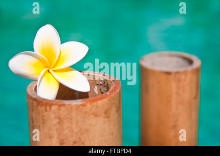 Plumeria flowers on bamboo trunks, blue water background - Stock Photo