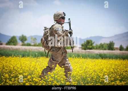 A U.S. Army paratrooper with the 82nd Airborne Division walks through a field of flowers while on patrol May 19, - Stock Photo