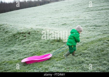 A little boy pulling his sledge back up the hill - Stock Photo