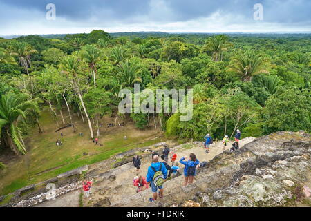 Tourists admiring the view of Yucatan from the top of High Temple, Ancient  Maya Ruins, Lamanai, Belize - Stock Photo