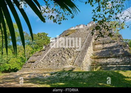 Ancient Maya Ruins, Tikal National Park, Yucatan, Guatemala - Stock Photo