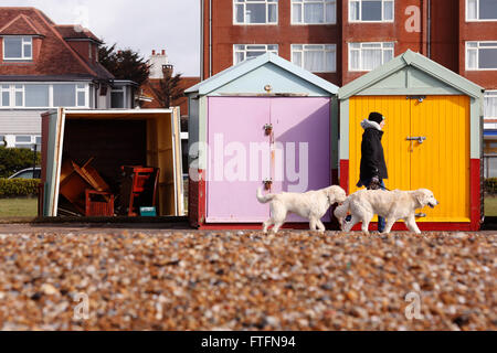 Brighton, UK. 28th Mar, 2016. A dog walker passes damaged beach huts in Hove after winds and rain brought by Storm - Stock Photo