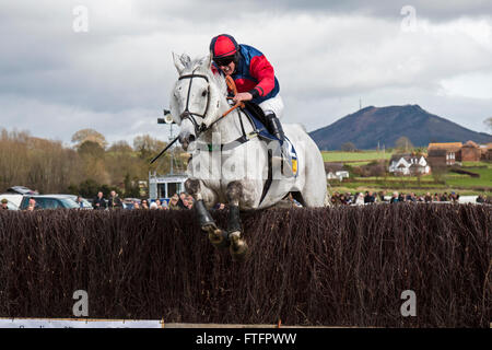 Eyton-on-Severn in Shropshire, UK. 28th March, 2016. 'Our Mick' running in The Men's Open Race at the Easter Bank - Stock Photo