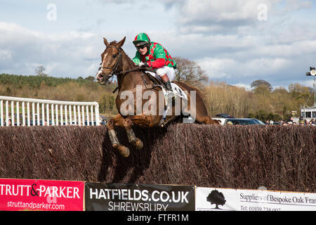Eyton-on-Severn in Shropshire, UK. 28th March, 2016. 'That's Mine', running in The Confined Hunts Race at the Easter - Stock Photo