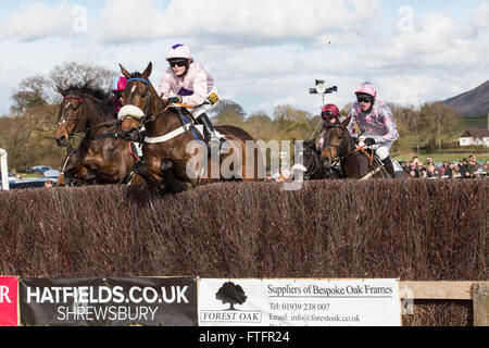 Eyton-on-Severn in Shropshire, UK. 28th March, 2016. 'Dunowen Point', ridden by Miss. A. McCain, leads the way in - Stock Photo