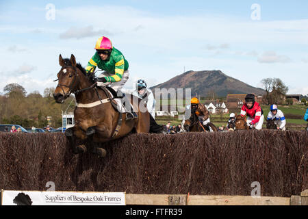 Eyton-on-Severn in Shropshire, UK. 28th March, 2016. Runners in the Open Maiden race at the Easter Bank Holiday - Stock Photo