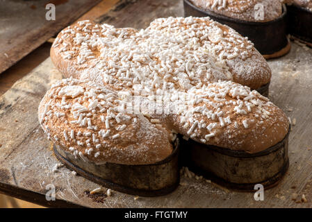 Traditional classic Italian colomba cake for celebrating Easter - Stock Photo