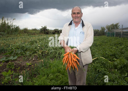 Farmer show carrots in the vegetable garden Pic by Pako Mera - Stock Photo