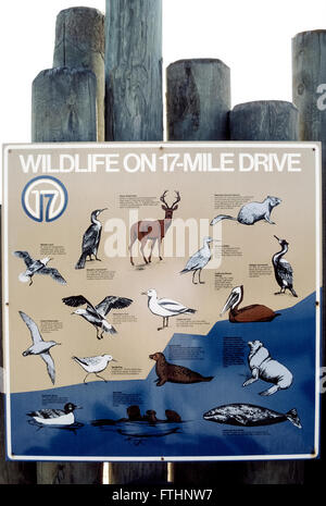 An illustrated sign describes the wildlife that visitors may see while taking the famed 17-Mile Drive on the Monterey - Stock Photo