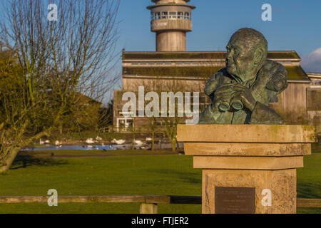 Sir Peter Scott sculpture at Slimbridge - Stock Photo