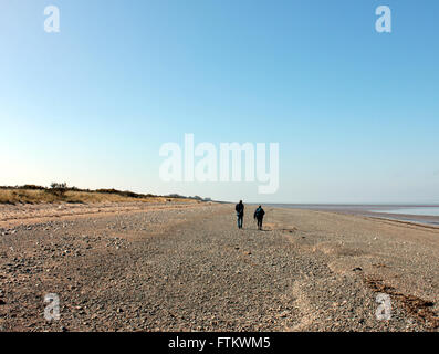 Two people walking along the wide open shore line under a cloudless blue sky at Grune point in West Cumbria - Stock Photo