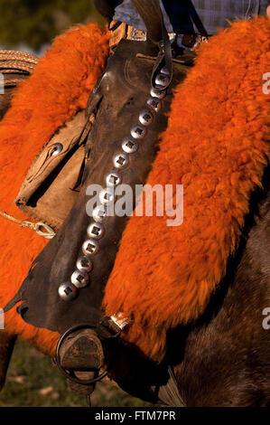 Saddle in pawn Pantanal Pantanal - Stock Photo