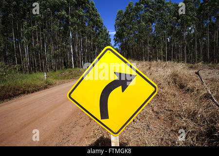 Dirt road amid eucalyptus plantation in rural Telemachus Borba - Stock Photo