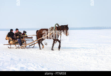 The horse harnessed in sledge, goes on the frozen river in Russia - Stock Photo