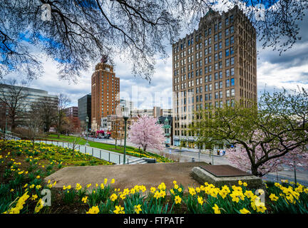 Gardens and buildings along 3rd Street, in downtown Harrisburg, Pennsylvania. - Stock Photo