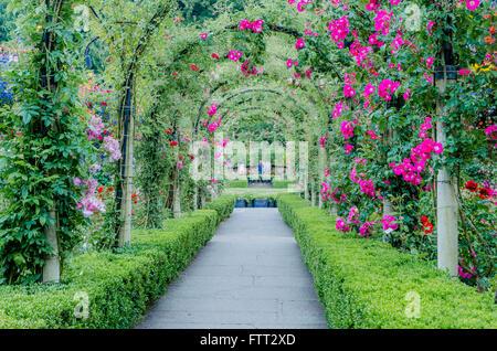 Rose Garden,, Butchart Gardens, Brentwood Bay, Vancouver Island, British Columbia, Canada - Stock Photo