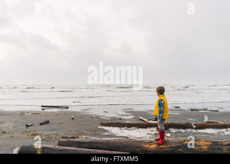 Boy standing on logs looking out to sea - Stock Photo