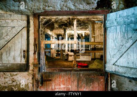 Rustic and worn stable door. - Stock Photo
