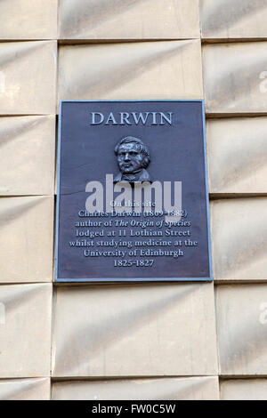 A wall plaque on South College Street in Edinburgh, dedicated to Charles Darwin - marking the location where he - Stock Photo