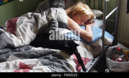 sleeping boy and cat - Stock Photo