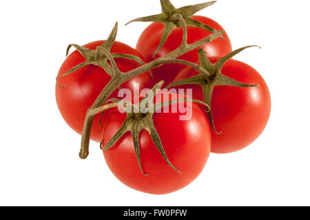 twig of fresh cherry tomato isolated on white background, clipping path - Stock Photo