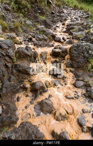 Gibi village, Gurage, Ethiopia, October 2013 Farmers lose their top soil as rain washes silt downstream. - Stock Photo
