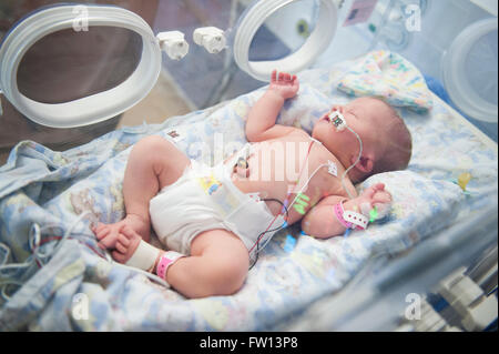 A very ill newborn baby girl asleep in an incubator attached to a feeding tube and lines to various machines - Stock Photo