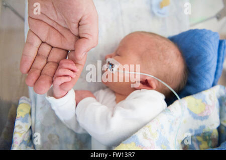 A very sick newborn baby girl holds her father's finger as she sleeps while being fed through a nose tube - Stock Photo
