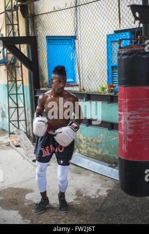 Havana, Cuba - September 22, 2015:  Young boxers train in famous boxing school of Rafael Trejo in Old Havana,Cuba. - Stock Photo