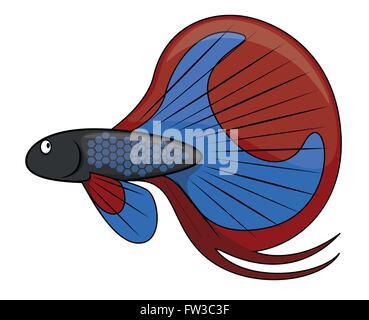 betta fish cartoon illustration - Stock Photo