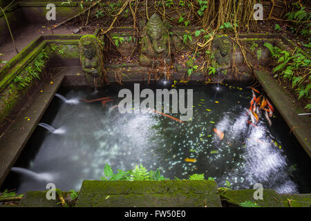 Bathing Pool in the The Holy Spring Temple,  Sacred Monkey Forest Sanctuary, Ubud, Bali, Indonesia - Stock Photo