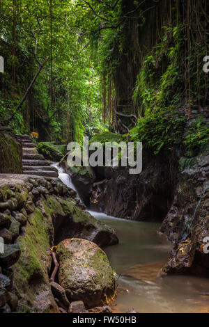 Monkey Forest Sanctuary, Ubud, Bali, Indonesia - Stock Photo