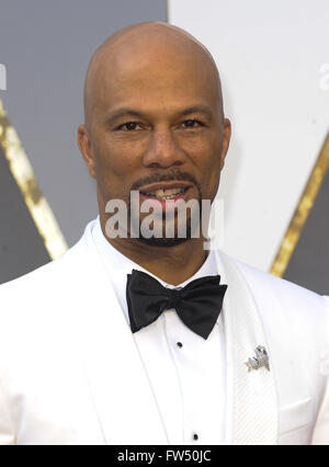 The 88th Annual Academy Awards Arrivals  Featuring: Common Where: Los Angeles, California, United States When: 28 - Stock Photo