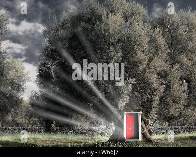 Fantasy Red open door in the tree - Stock Photo