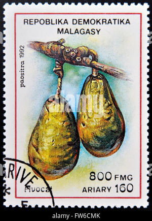 REPUBLICA MALAGASY - CIRCA 1992: A stamp printed in Madagascar shows Avocados, Persea Americana, Fruit, circa 1992 - Stock Photo