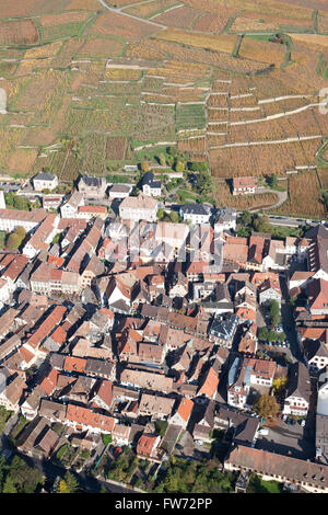 VILLAGE OF RIBEAUVILLÉ AND VINEYARD IN THE FALL (aerial view). Haut-Rhin, Alsace, France. - Stock Photo