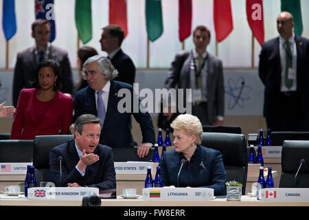 David Cameron, U.K. prime minister, left, talks to Dalia Grybauskaite, Lithuania's president, during a closing session - Stock Photo