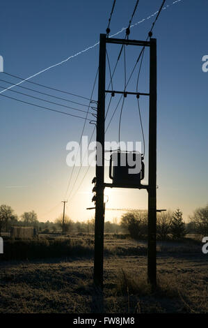Power lines stretch out into the countryside suspended from tall telegraph poles and illumintaed by the early morning - Stock Photo