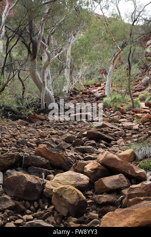 kings canyon creek and riverbed  in the northern territory outback  australia - Stock Photo
