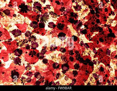 Modern abstract graphic design digital art  creative concept - Stock Photo
