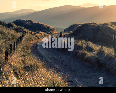 Photograph of a footpath running through sand dunes taken during early morning just after sunrise. - Stock Photo