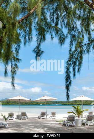 Sun loungers on Ile Aux Cerfs in Mauritius. - Stock Photo
