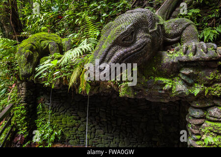 Giant Lizard in Sacred Monkey Forest Sanctuary, Ubud, Bali, Indonesia - Stock Photo