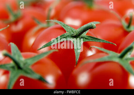Several fresh ripe cherry tomatoes filling the whole frame - Stock Photo