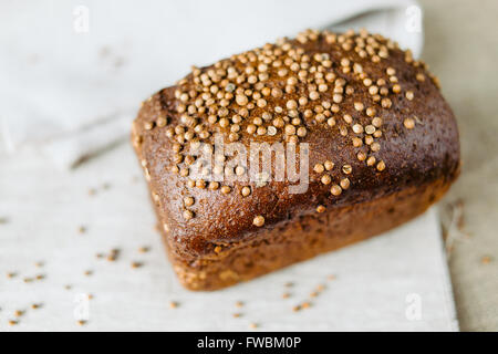 Black bread with fresh coriander closeup - Stock Photo