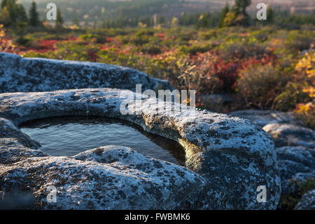 Close up of a small pool of water in a stone boulder found on a hike in the morning light against autumn foliage. - Stock Photo