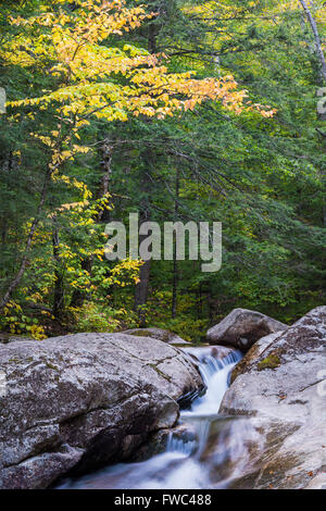 A section of the Pemigewassett River rushes through Franconia Notch State Park near the Basin, Grafton Co., New - Stock Photo