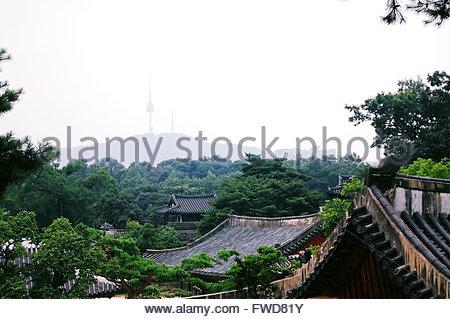Changgyeonggung Palace and N Seoul Tower - Stock Photo