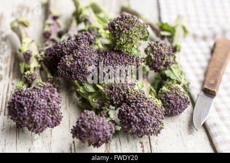 Broccoli rabe (also known as rapini) - Stock Photo
